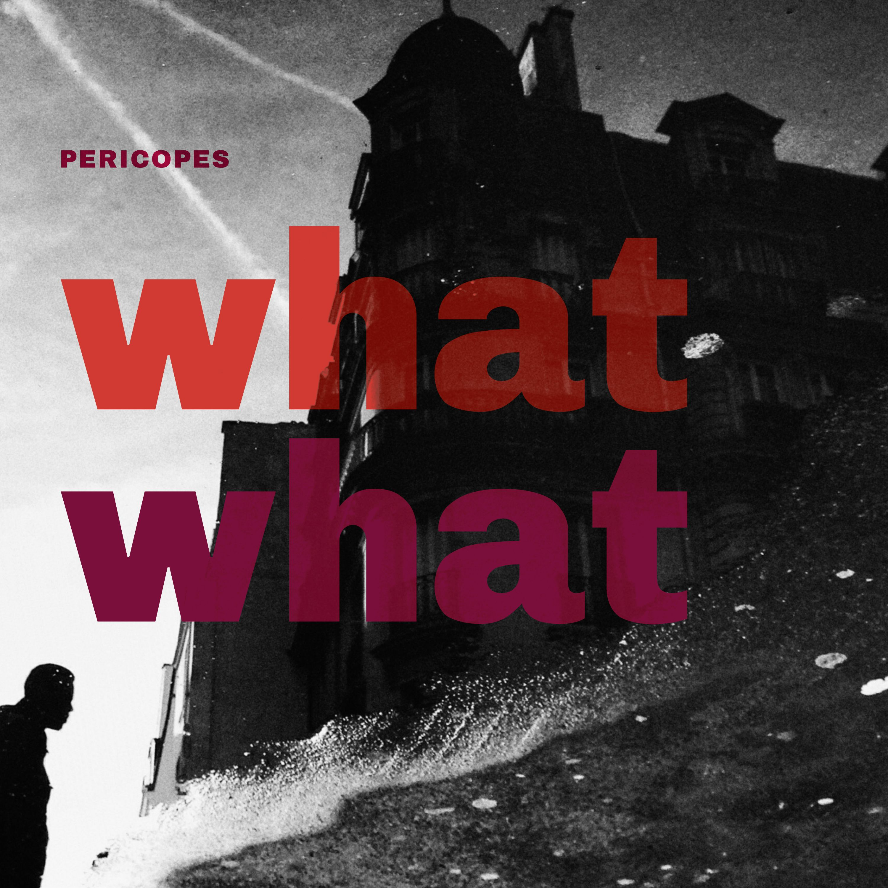 WHAT WHAT (2018)